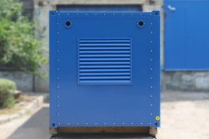 Фото металлического контейнера для ДГУ вид спереди